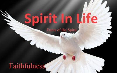 Spirit in Life: Faithfulness